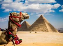 На море в Єгипет - за 130 $/ з особи